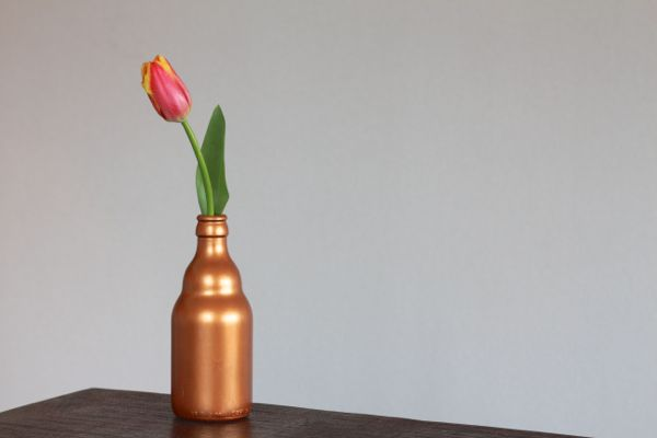 painted metallic beer bottle vase from www.alyssaandcarla.com