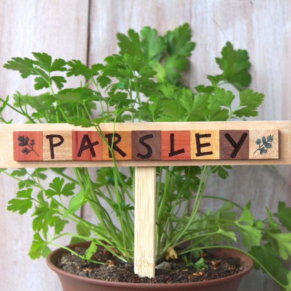 parsley garden marker from www.alyssaandcarla.com