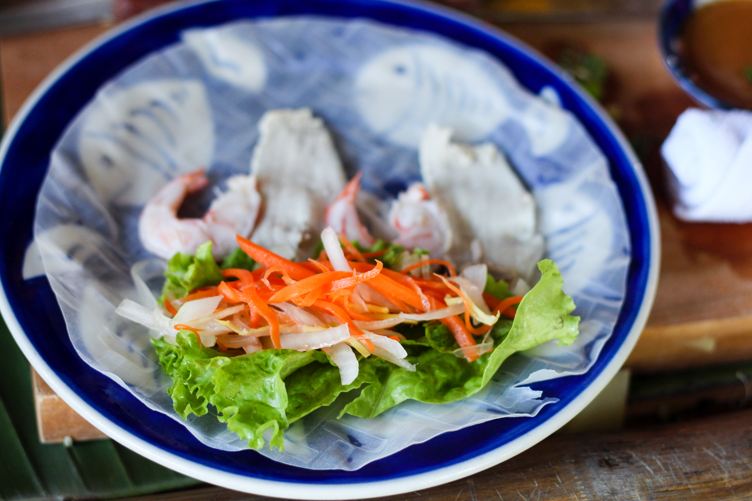 Hoi An Eco Coconut Tour - Fresh Spring Rolls | Alyssa & Carla